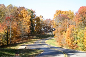A beautiful fall drive along the Natchez Trace Parkway in Tennessee during Autumn. photo by Lynnette