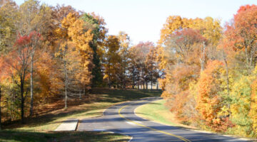 What It's Like To Drive On The Natchez Trace Parkway