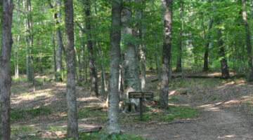 Old Trace Hiking Trail at Milemarker 426.3