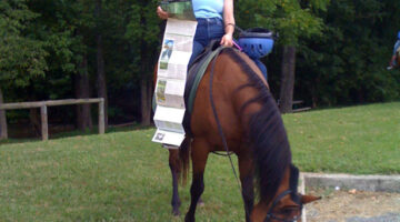 Horseback Riding Natchez Trace Parkway