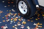 Freshly fallen leaves underneath the tires of my Jeep.