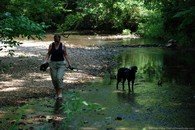 lynnette-and-tenor-dog-garrison-creek.jpg