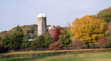 Fall Colors At The Judd's Family Farm …As Seen From The Natchez Trace Parkway