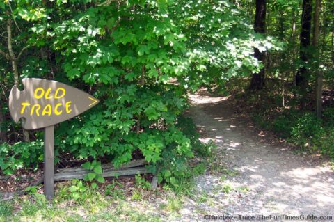 The trailhead at the Old Natchez Trace hiking path.