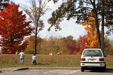 Photographing dogs amidst the beautiful Fall colors seen on the Natchez Trace.